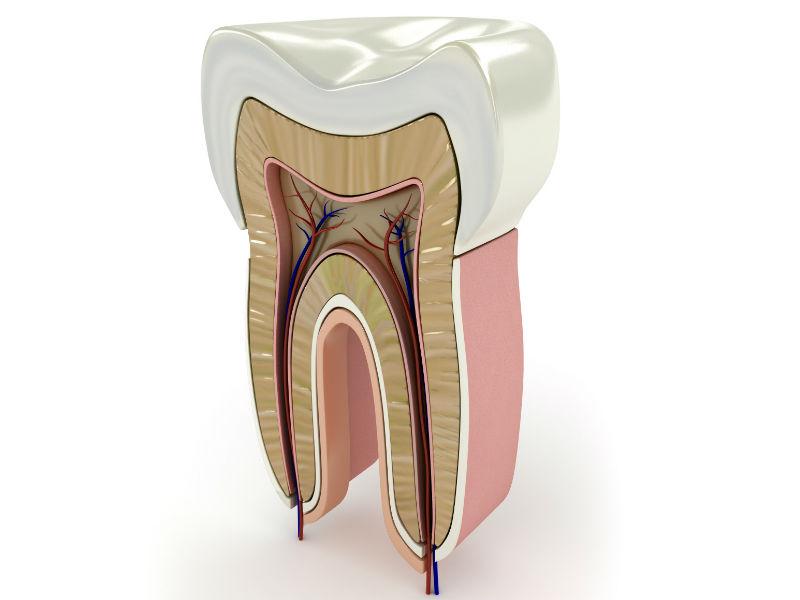 Tratamientos de endodoncia en tu clínica dental de Chamberí
